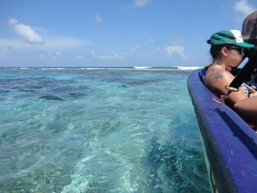 A pretty amazing snorkeling spot near Little Corn