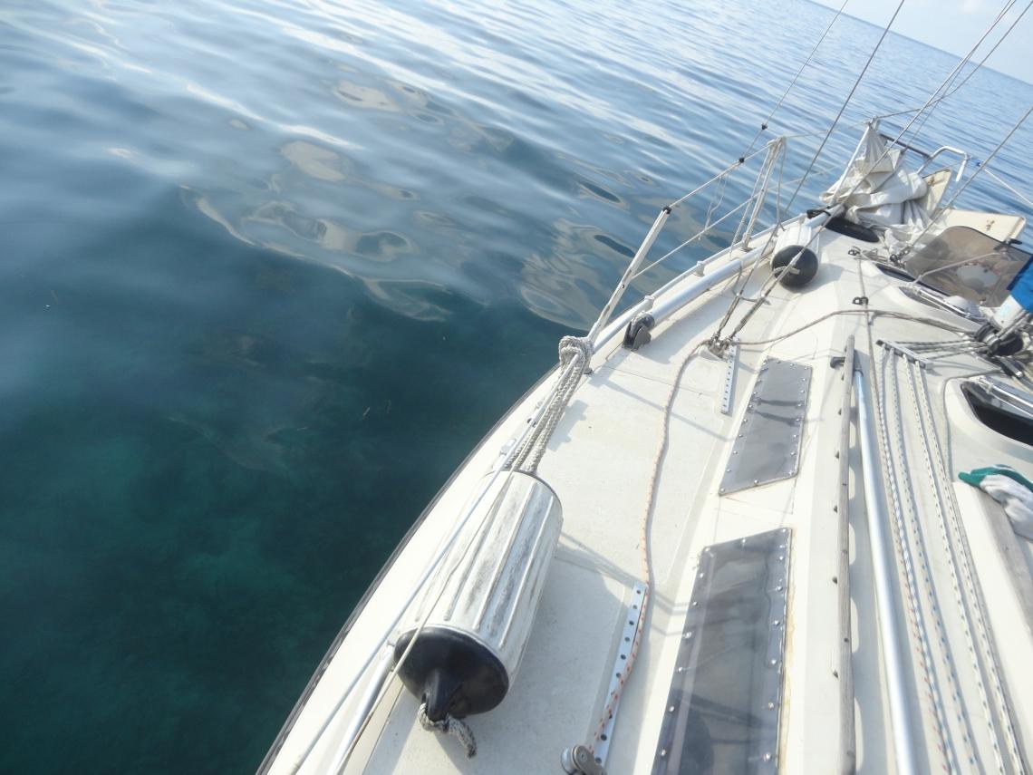 Docked in Utila's Harbor