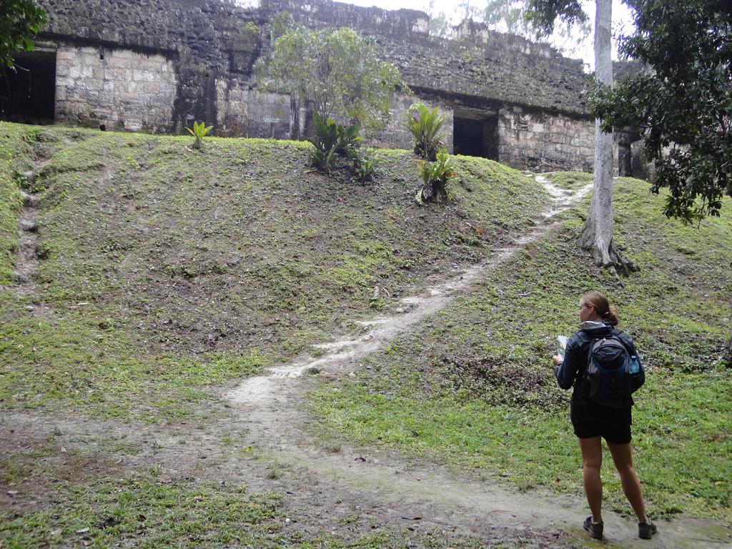 Temple climbing, tomb raiding, in Tikal
