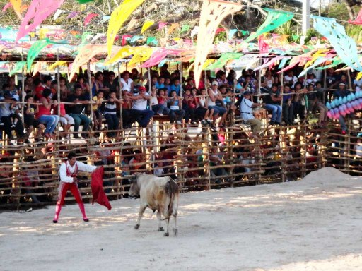 Bullfight in the Yucatan
