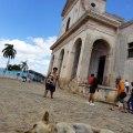 Napping street dog in Trinidad, Cuba