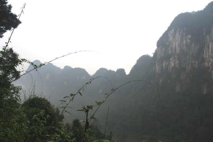 The limestone cliffs of Phong Nha National Park