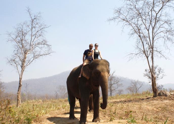 Elephants, Pai