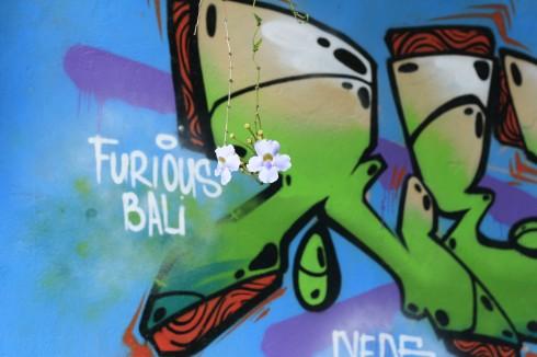 Graffiti in Ubud, Bali