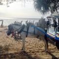 Gili Island taxis