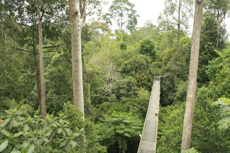 how to get from kota kinabalu to sandakan